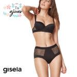Conjunto capacidad GISELA-3/0308